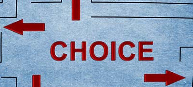 website vendor choice
